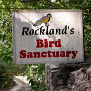 Jamaica Bird Sanctuary